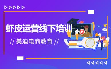 广州虾皮运营线下培训机构