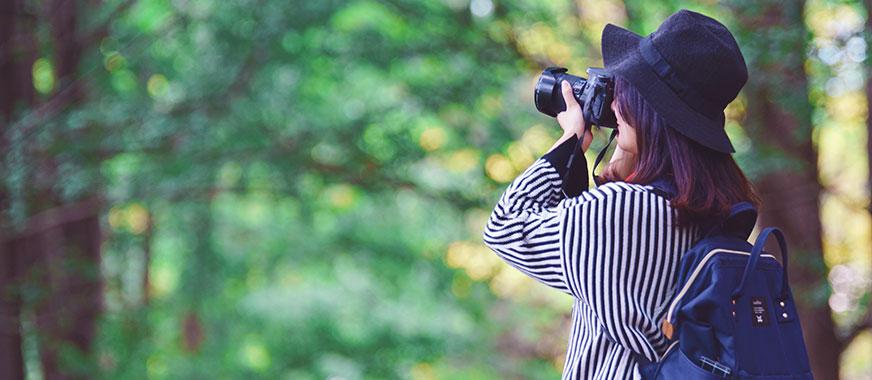 学摄影去哪个学校,学摄影要学多久能出师? - 美迪教育