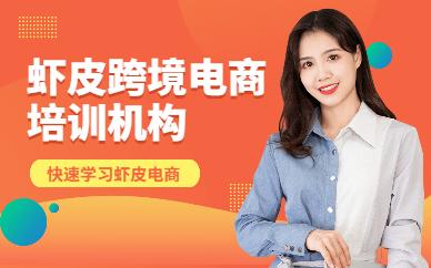 东莞虾皮跨境电商培训机构